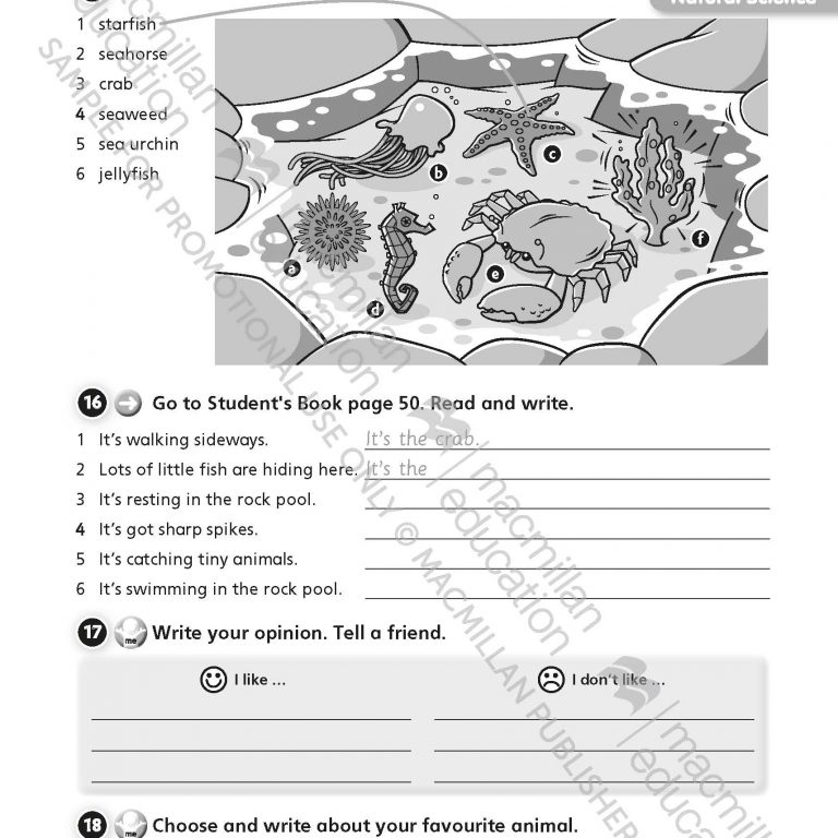 Tiger_Time_Level_3_Activity_Book_Sample_Unit_Page_5