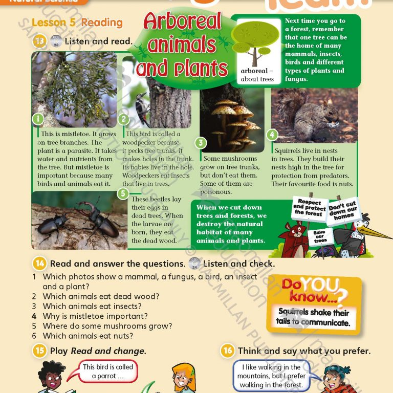 Tiger_Time_Level_4_Students_Book_Sample_Unit_Page_6